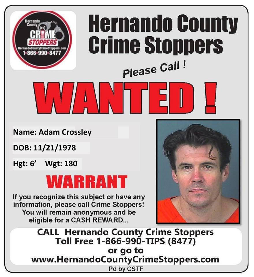 Wanted - Adam Crossley